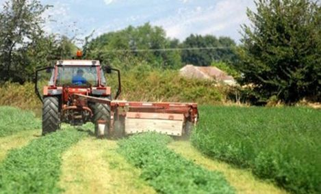 Picture 0 for Αγρότες : Βεβαίωση εγγραφής στο Μητρώο μόνο με δήλωση ΟΣΔΕ