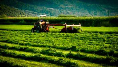 Picture 0 for Εν συντομία : Βασικές αλλαγές που επέρχονται στο ειδικό καθεστώς των αγροτών