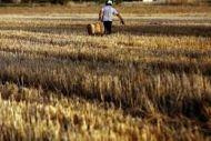 Αγρότες : Ελεγχοι επί τόπου για πίνακα προσωπικού