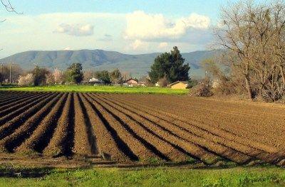 Picture 0 for Πώς θα ξεμπλέξουν με την εφορία δεκάδες χιλιάδες αγρότες
